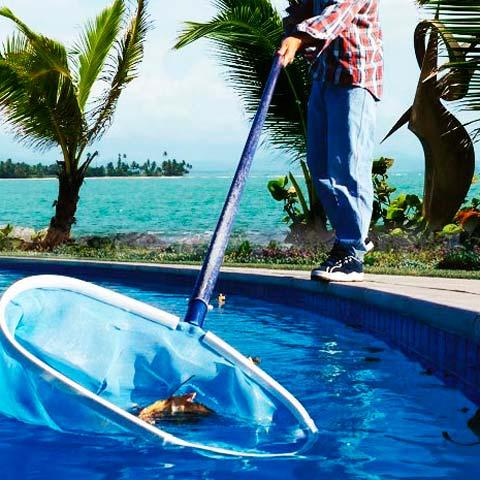 Personal de limpieza de piscinas