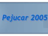 pejucar 2005