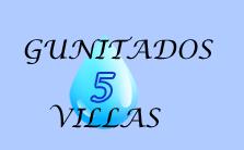 Gunitados Cinco Villas